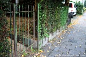 Afbeelding 6 tuinhekje