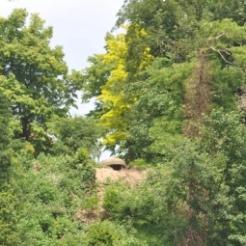 bunker zomer16 lvm
